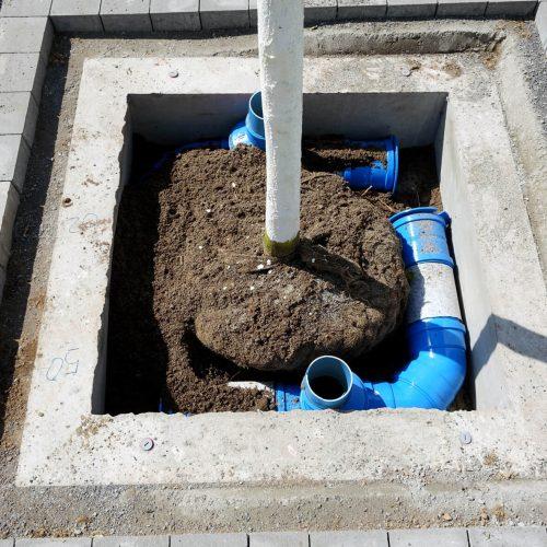 Damit die Funke-Baumbewässerungswinkel in die Betonschutzglocken passten, wurde die Standardausführung an die Verhältnisse vor Ort angepasst. Foto: Funke Kunststoffe