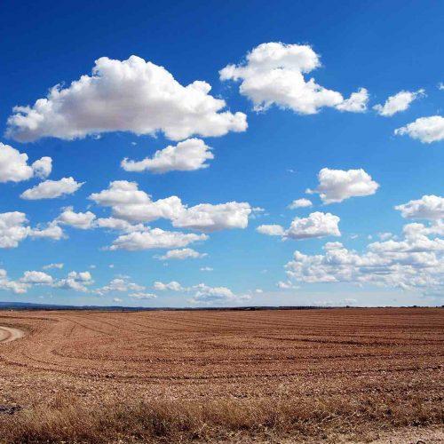 Ein extrem heißer und trockener Sommer hat das Stichwort Klimawandel wieder ins Bewusstsein aller zurückgeholt. Foto: pixabay