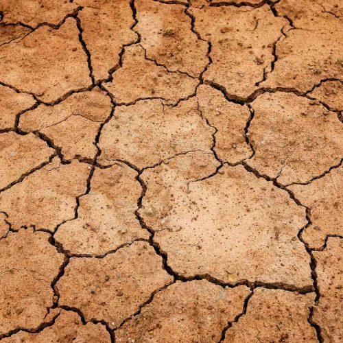 Zu wenig Wasser: Welche Herausforderungen kommen auf die Wasserversorger zu, ist die Wasserversorgung auch zukünftig gesichert? Foto: pixabay