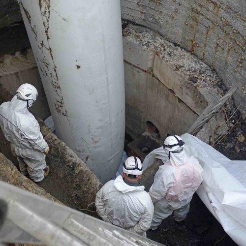 Durch den Stützschlauch wurde der Schlauchliner in die Haltung inversiert. Foto: D&S Rohrsanierung