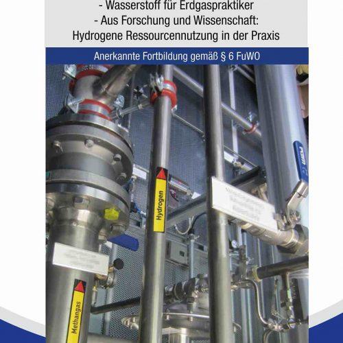 Viele Impulse zur Diskussion rund um den Wasserstoff bot das Online-Seminar des iro am 15. und 16. April. Foto: iro
